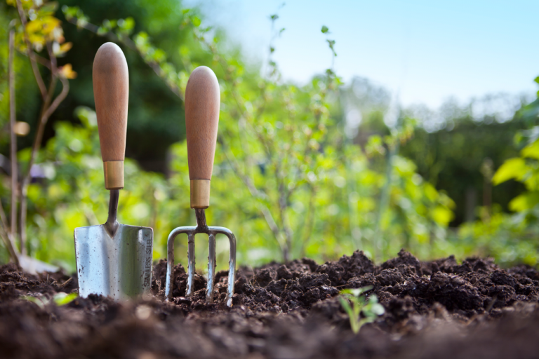 Garden tools in soil